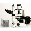 Accu-scope 3032 Phase Plan Fluorite Inverted Fluorescence Microscope