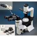 Labomed TCM400 Phase Inverted Fluorescence Microscope
